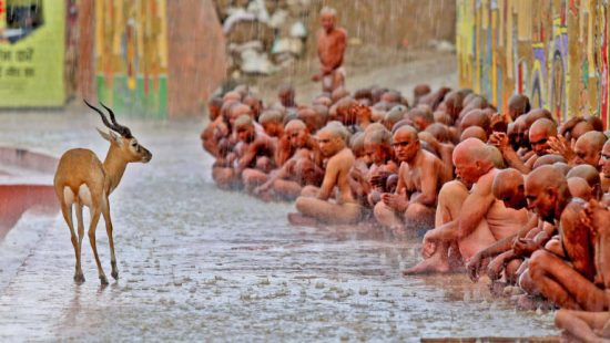 Best-Photo-of-the-Kumbha