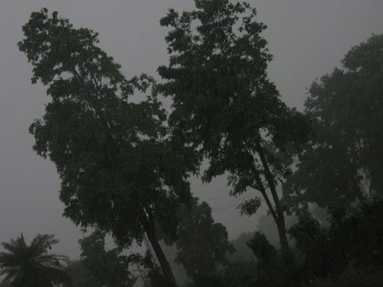Rain in Udaipur 2011