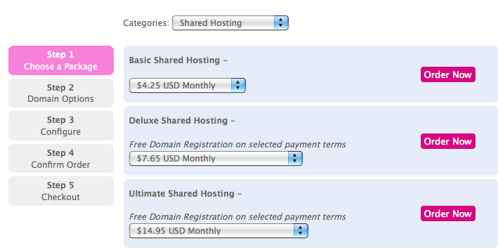 Choose Basic Shared Hosting Plan