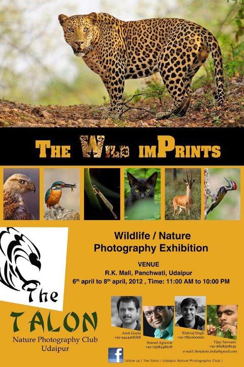 The Wild Imprints
