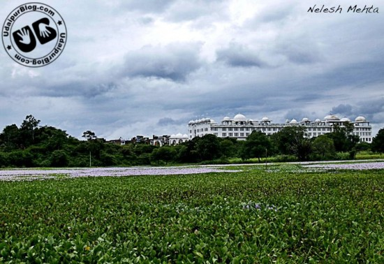 Rani Road, view of  Sheraton Udaipur Palace Resort & Spa. by Nelesh Mehta