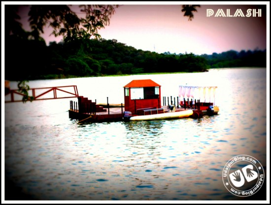 Palash Bolia