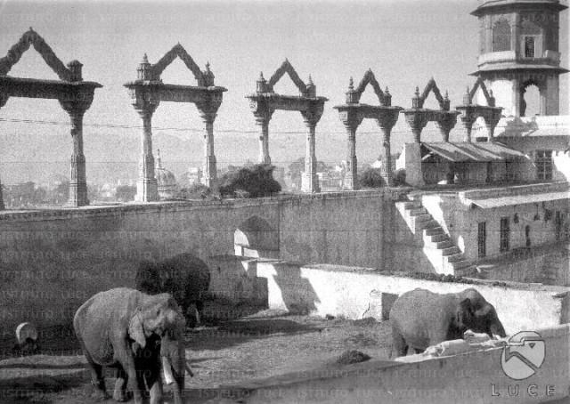 Udaipur Il palazzo del maharaja
