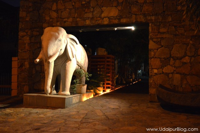 Bougain Villaea Gallery Udaipur