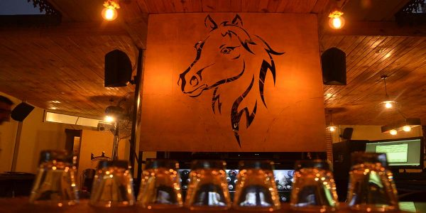 Best Pubs and Bars in Udaipur